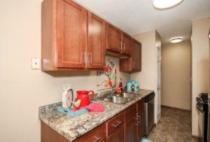 VAES- Remodeled Kitchen 2